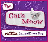 visit Skeezy&#39;s noo blog at Catster!