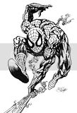 Spiderman printable coloring pages of Spidey shooting webs.